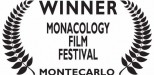 montecarlo_quadratobianco_risultato